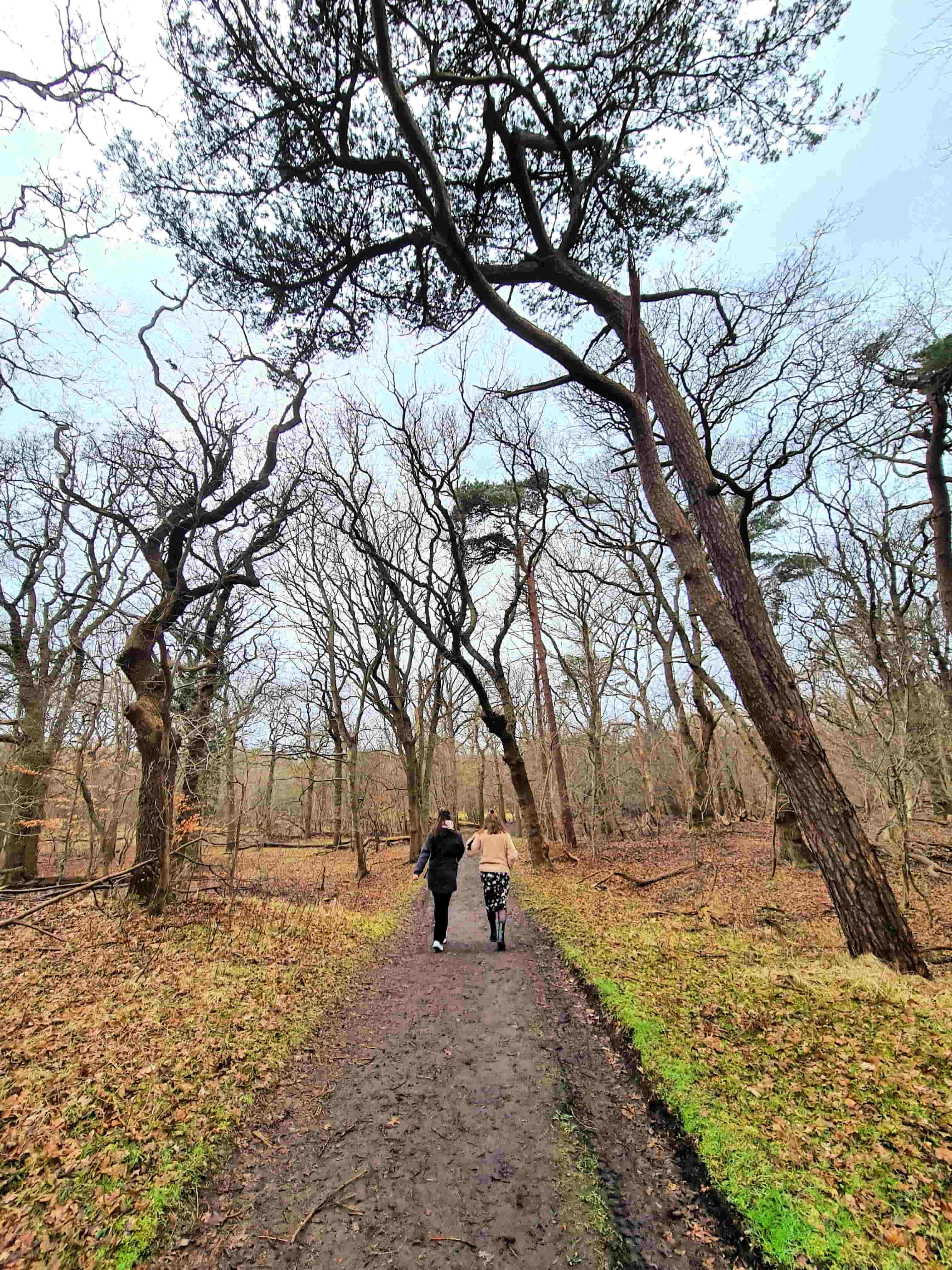 IJmuiden wandeling natuur